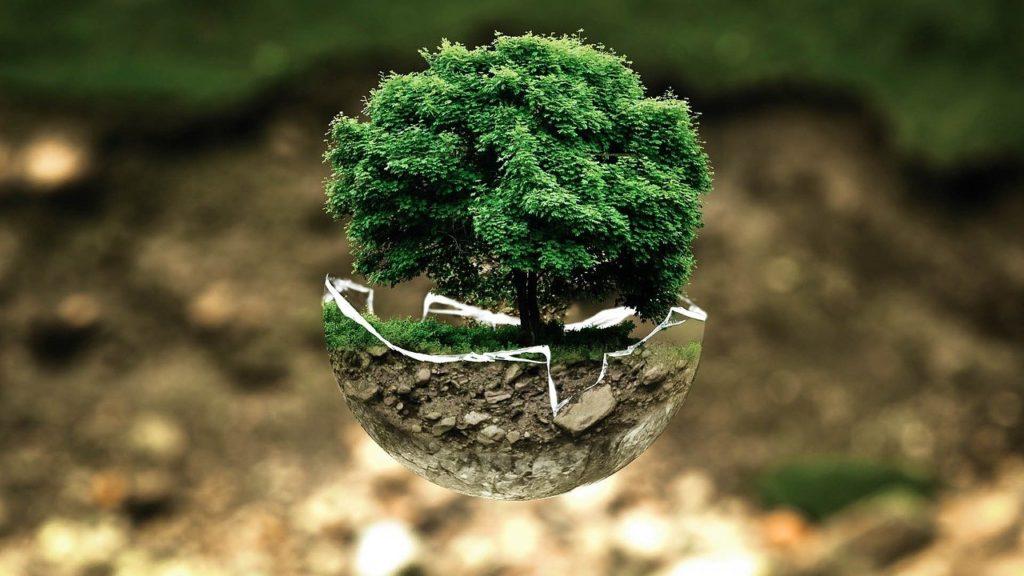 tutela delle risorse del pianeta
